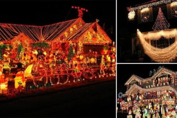 crazy christmas decorations