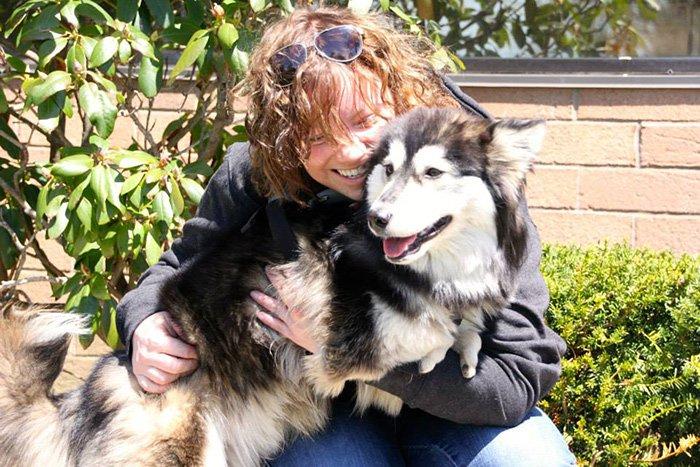 dog-foster-mom