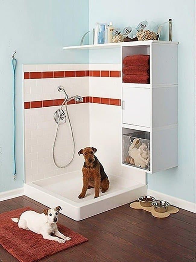dog-shower-garage