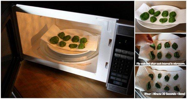 dry herbs microwave
