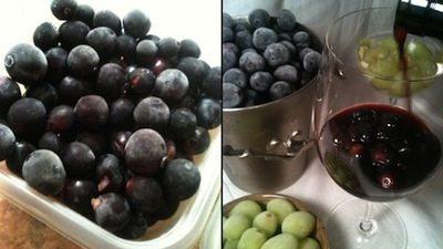 fruit-berries