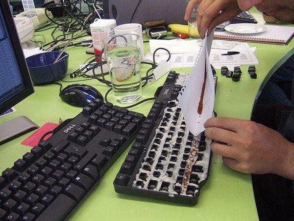 grass garden in coworkers keyboard