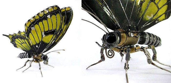 igor verniy butterfly 2