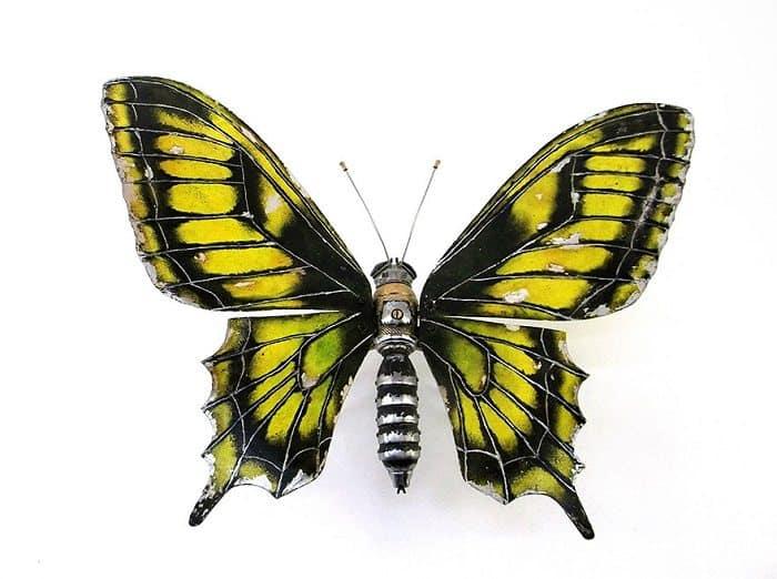 igor verniy butterfly