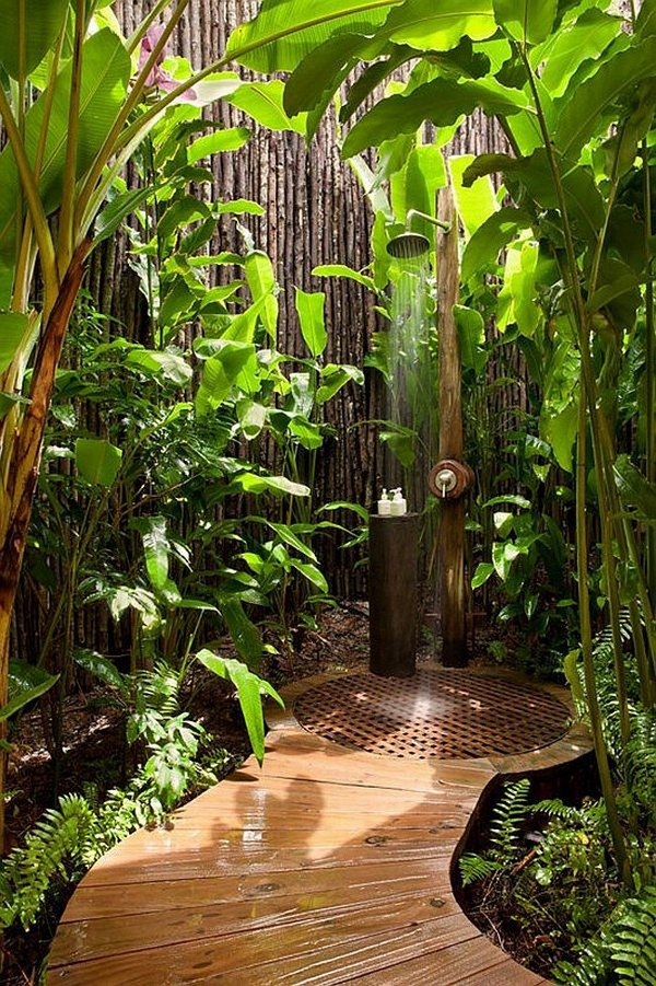 jungle shower