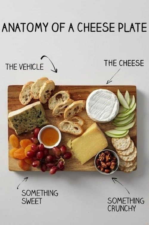 kitchen-anatomy-cheese