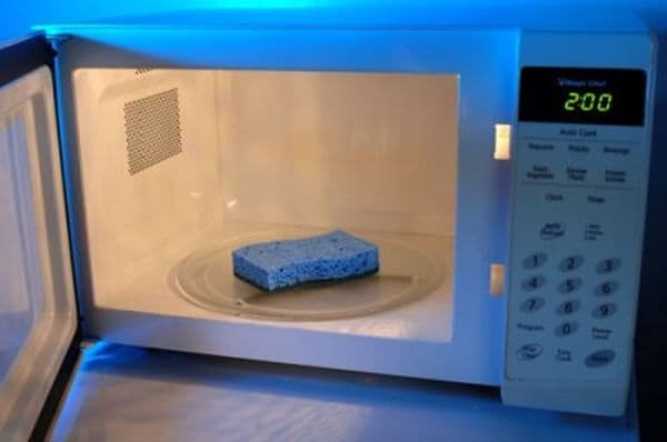 microwave-kitchen-sponge