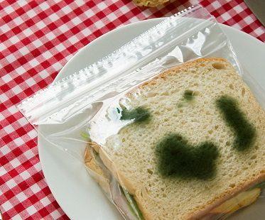 moldy sandwich bags plate