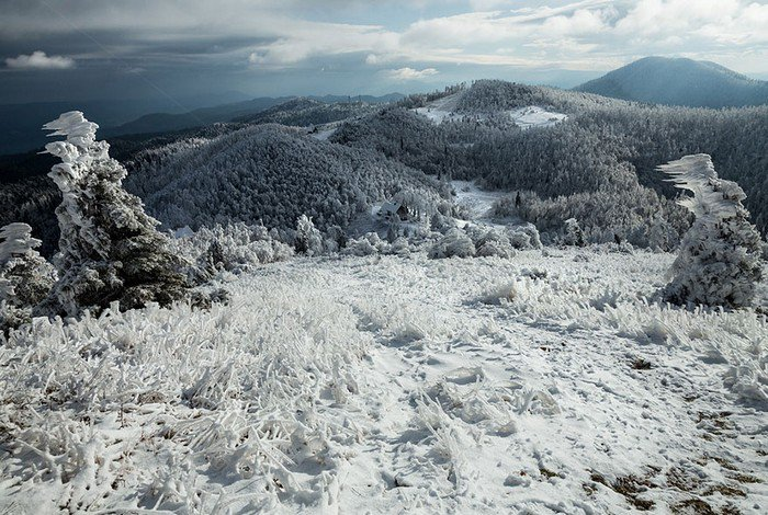 mount-javornik-slovenia-winter-vista