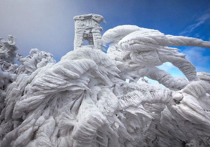 mount-javornik-slovenia-winter
