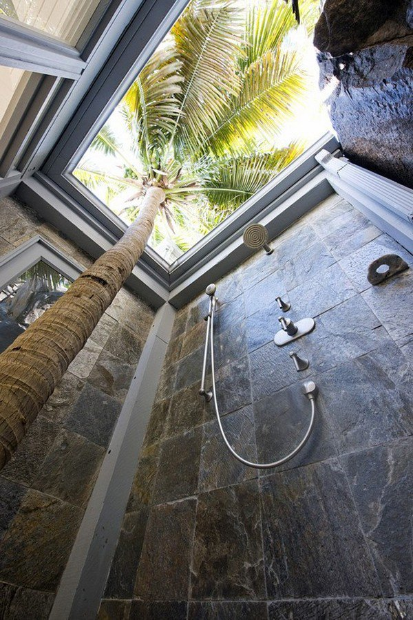 palm tree shower