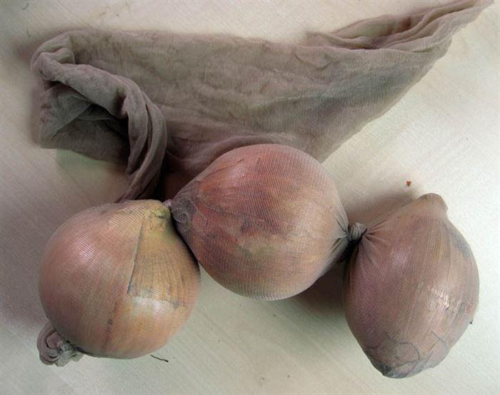 pantyhose onions