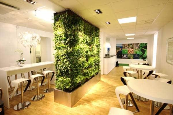 plant-room-divider