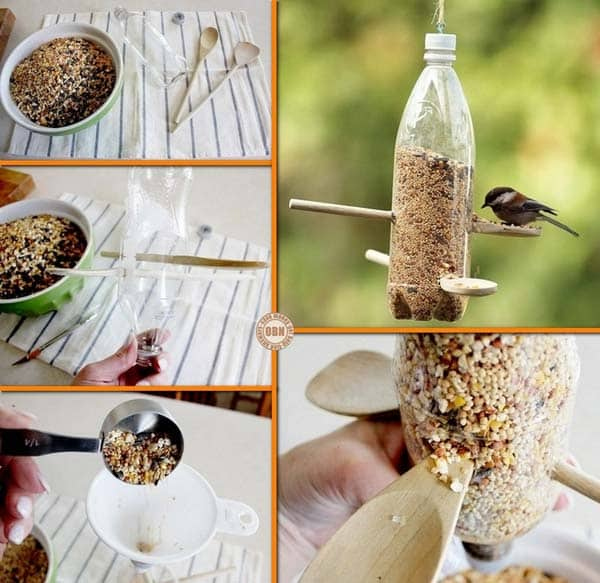 plastic-bottle-bird-feeder