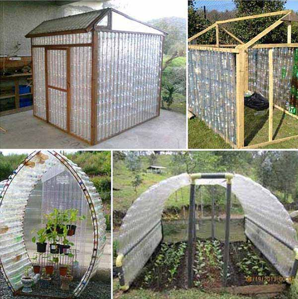 plastic-bottle-greenhouses