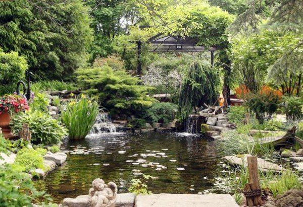 ponds waterfalls stream