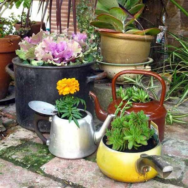 pot teapot plant holders