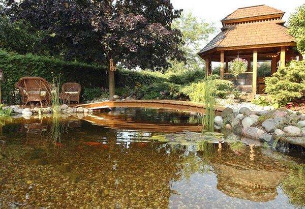 serene water yard