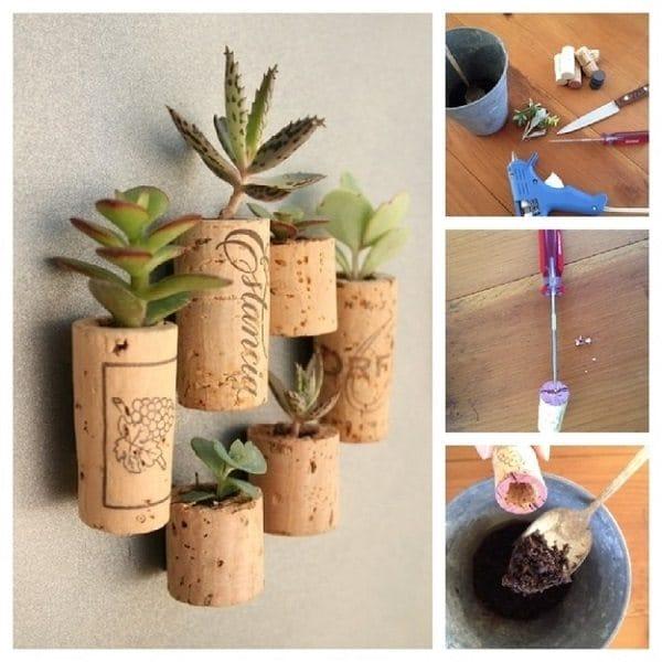 small plant pots