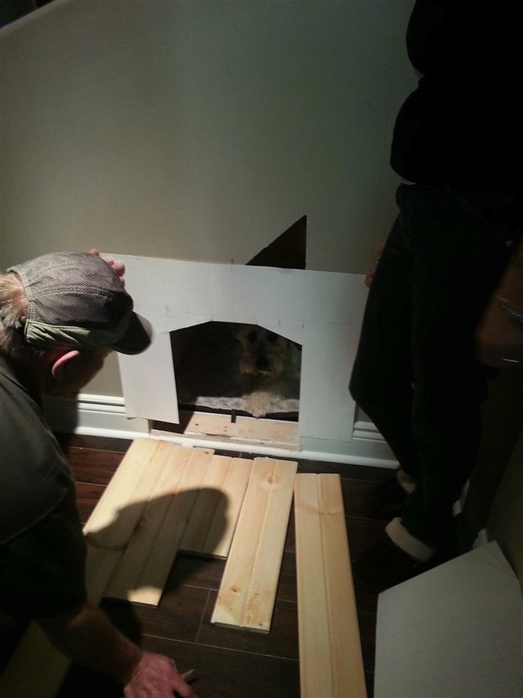 stairs-dog-frame