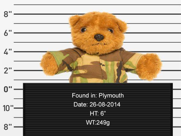 teddy-rescue-coma-bear