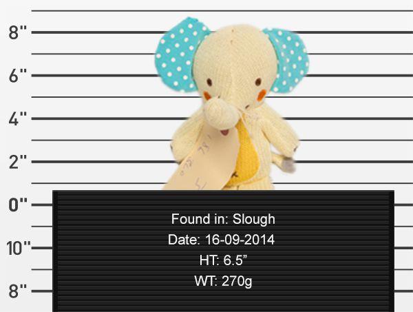 teddy-rescue-elephant