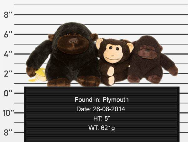 teddy-rescue-gorillas