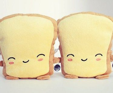 toast usb hand warmers mitts