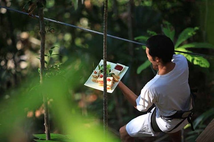 tree-restaurant-line