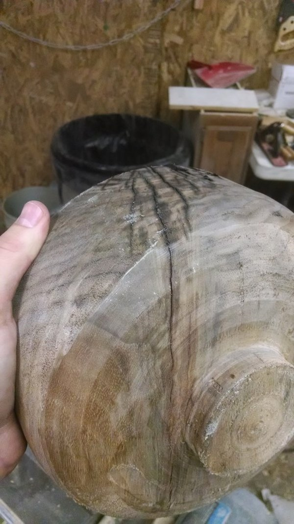 tree-trunk-crack