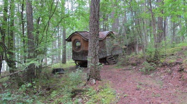 woods wagon trees