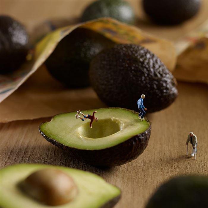 avocado skate park minimiam