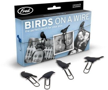 bird clip picture hangers pack