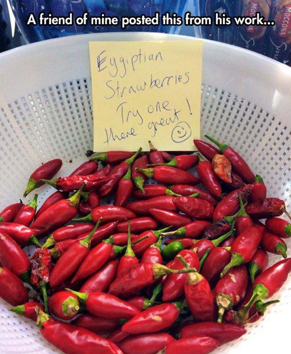 chillies not strawberries