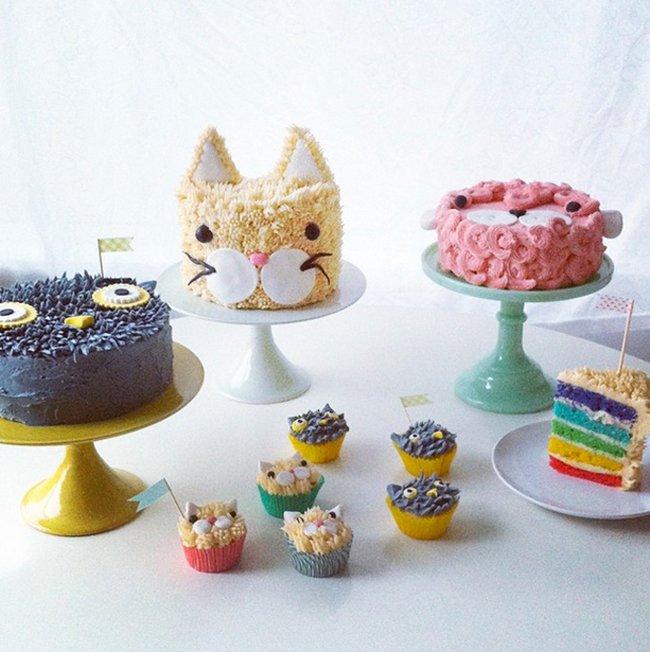 coco-cake-land-cakes
