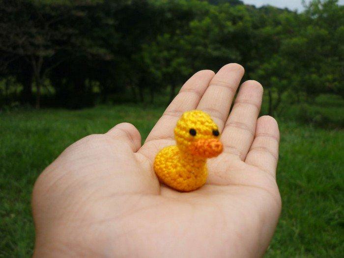 duck hand
