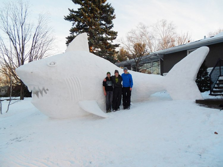 giant-snow-sculptures-bartz-brothers-shark-first