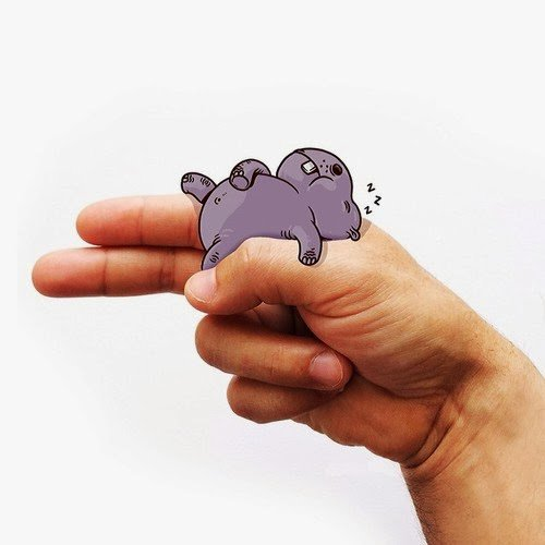 h hippo
