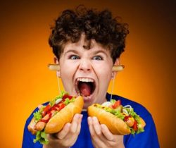 hot dog earphones buds