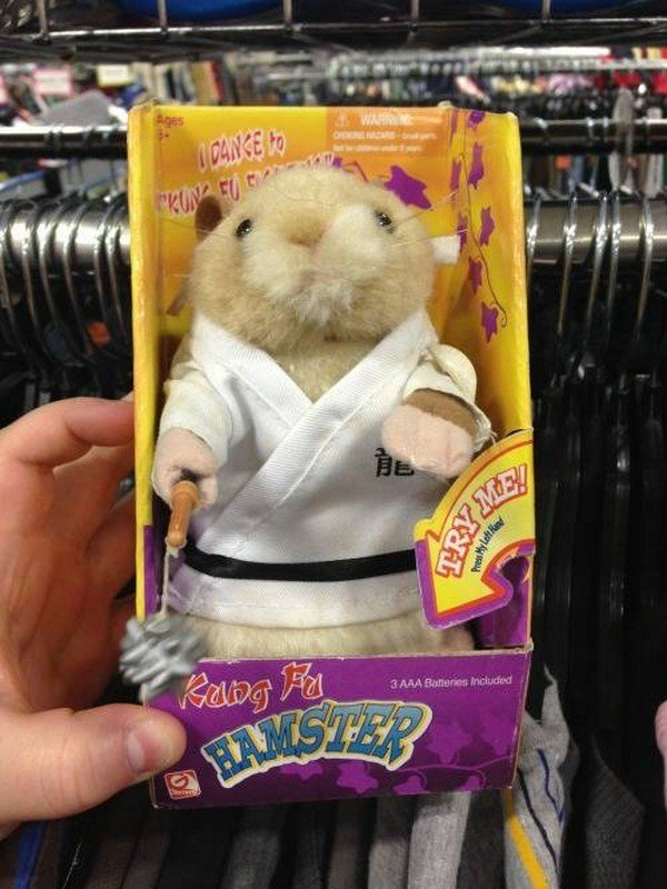 kung fu hamster