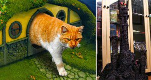 lotr cat litterbox and scratching post