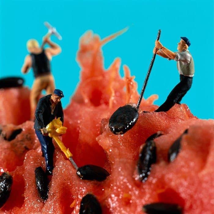 melon minimiam