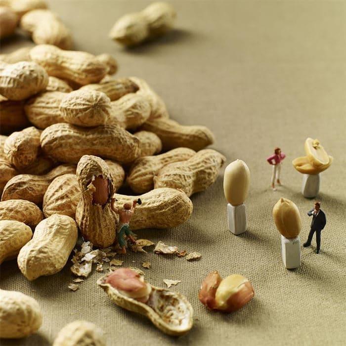 peanut carving minimiam