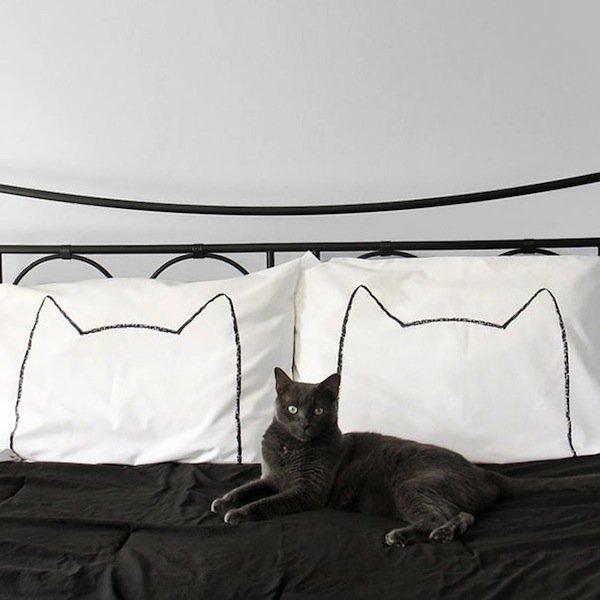 pillow-catnap