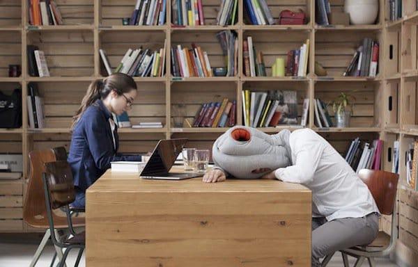 pillow-ostrich