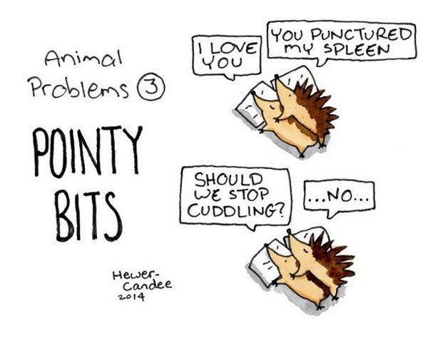 pointy bits