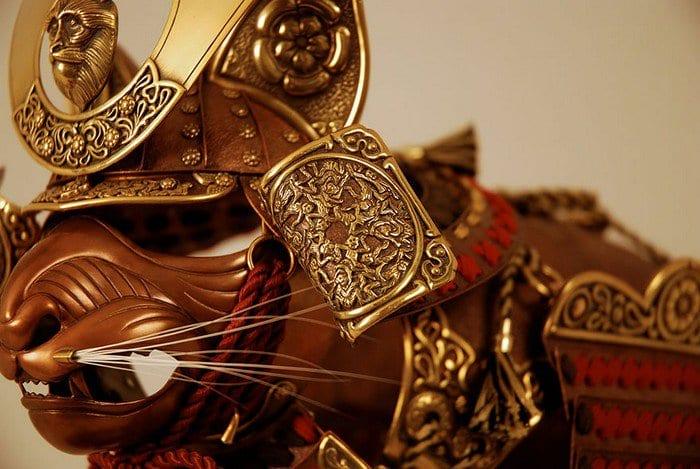 samurai siamese close up