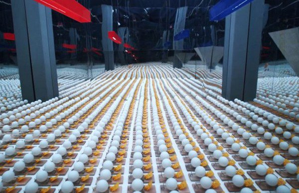 thousands mousetraps balls