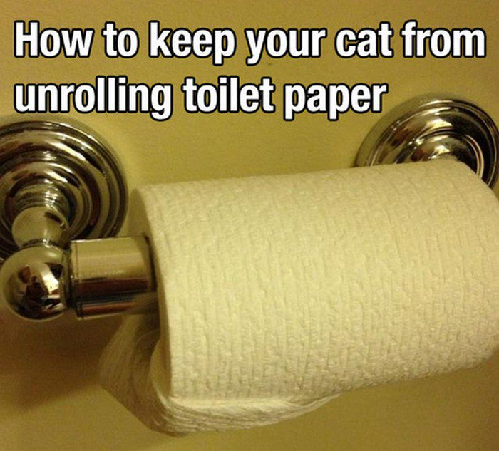 toilet paper tuck
