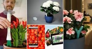 gardener Apps Gadgets
